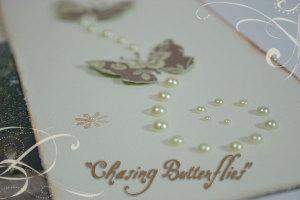 Chasingbutterfliessneakp